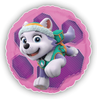 Paw Patrol Everest Rescue Pup